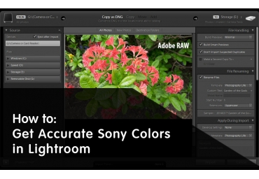 Como Obter Cores Precisas da Sony no Lightroom